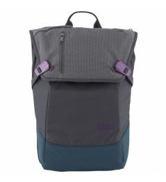 Batoh Aevor Daypack echo purple 2019